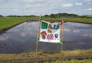 田んぼの学校の写真